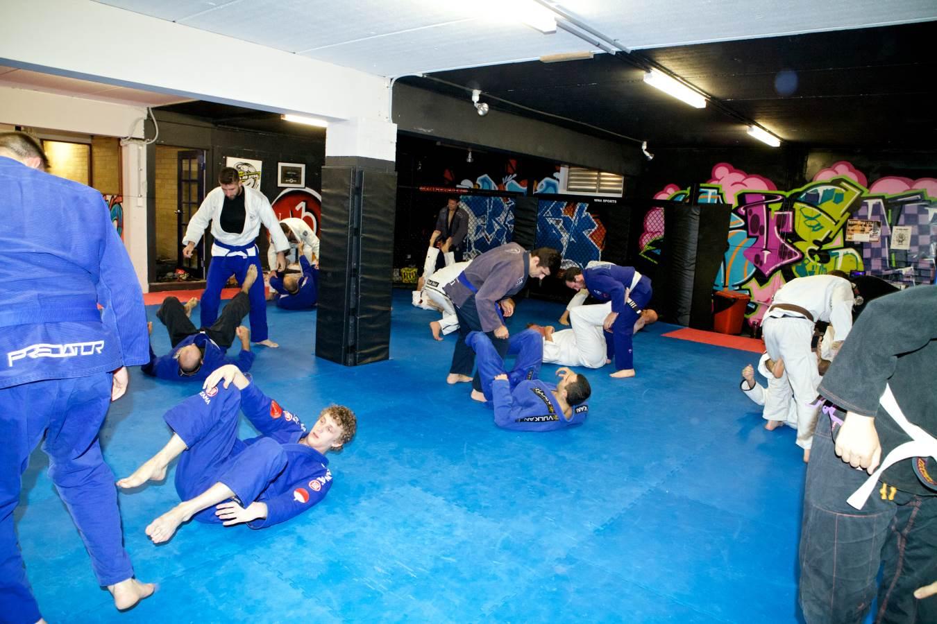 Stockade Training